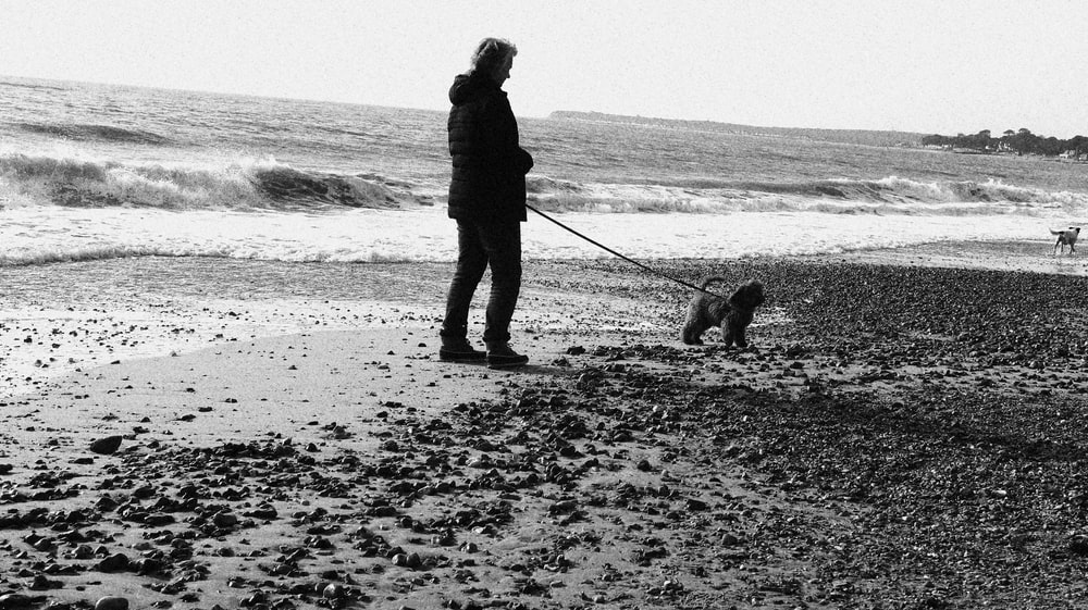 silhouette of man and dog walking on beach shore during daytime