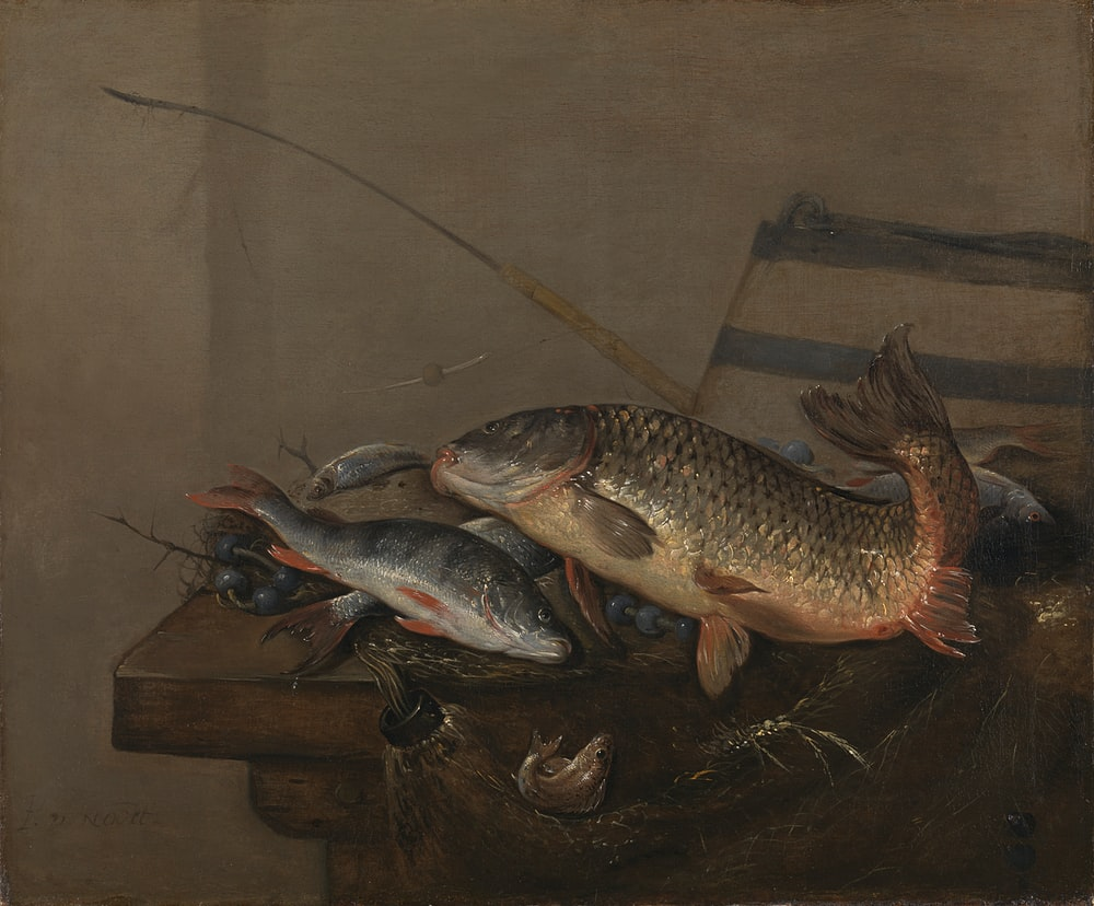 silver and yellow fish on brown wooden table