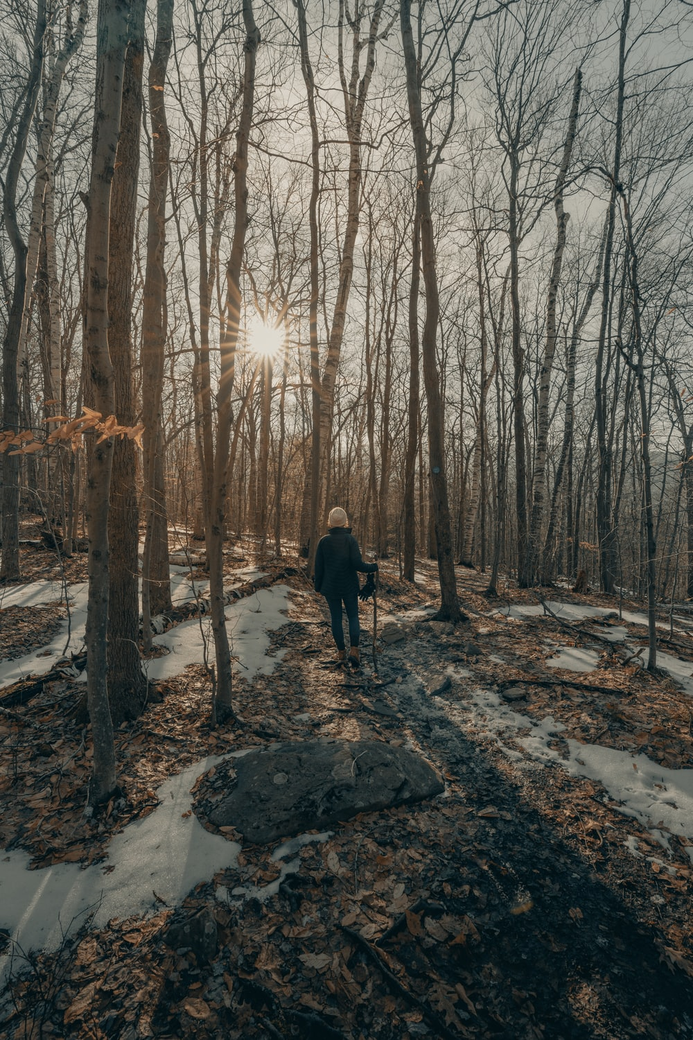 person in black jacket standing on snow covered ground in between bare trees during daytime