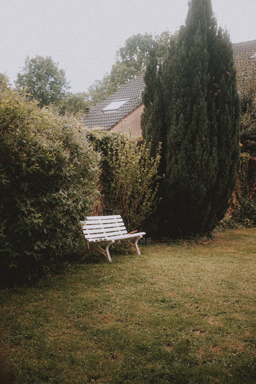 brown wooden bench beside green tree