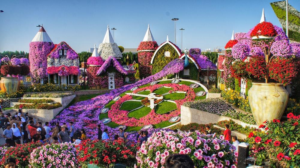 Flower Garden Pictures Download Free Images On Unsplash