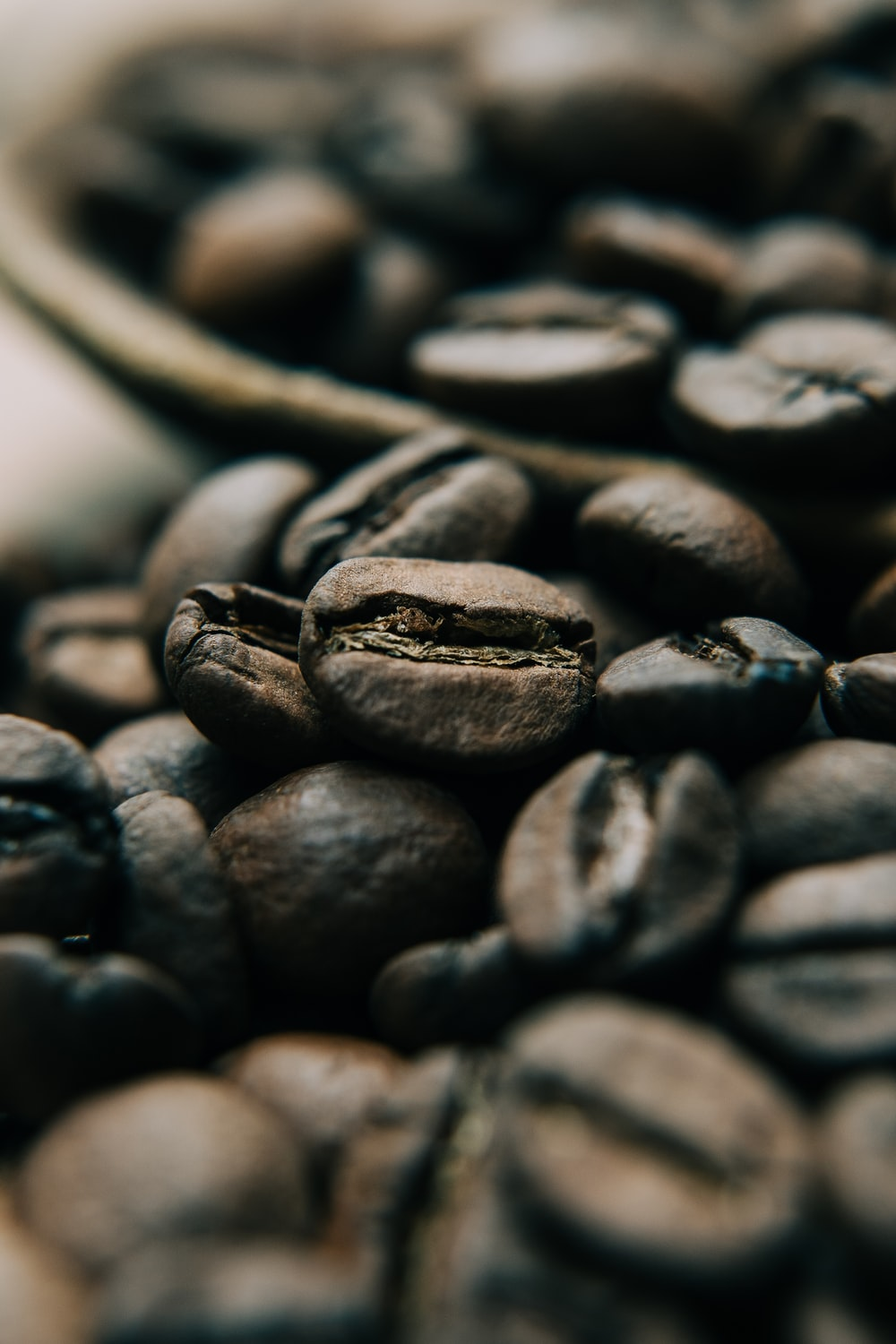 black coffee beans in close up photography