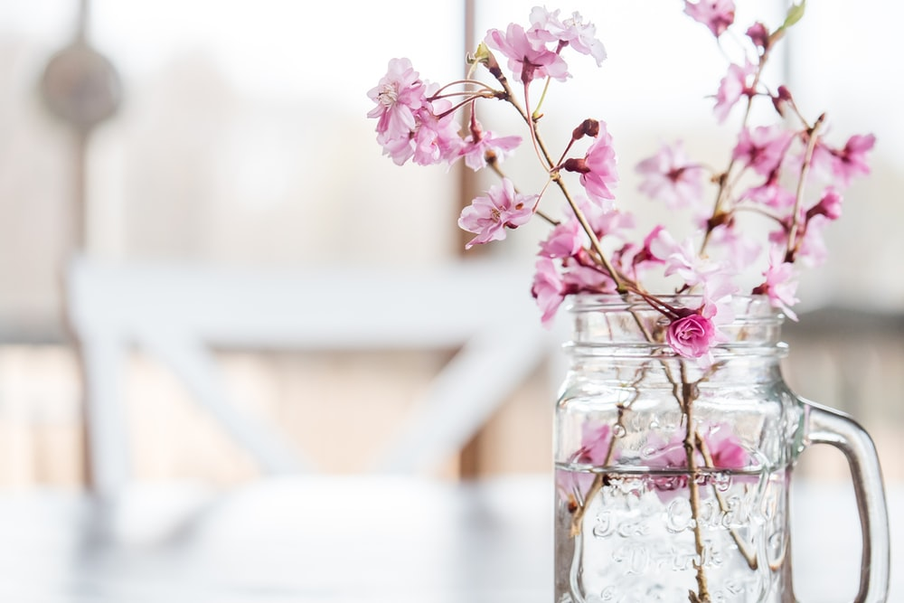 pink flowers in clear glass jar