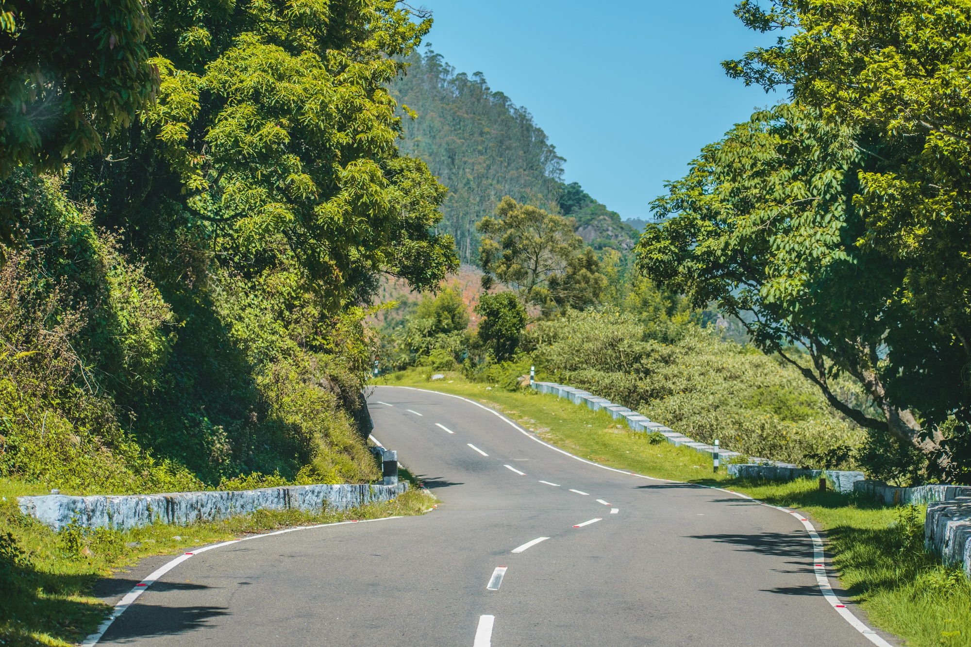 Indian hill roads can sometimes look right out of a dream.