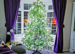 green christmas tree with string lights near purple window curtain