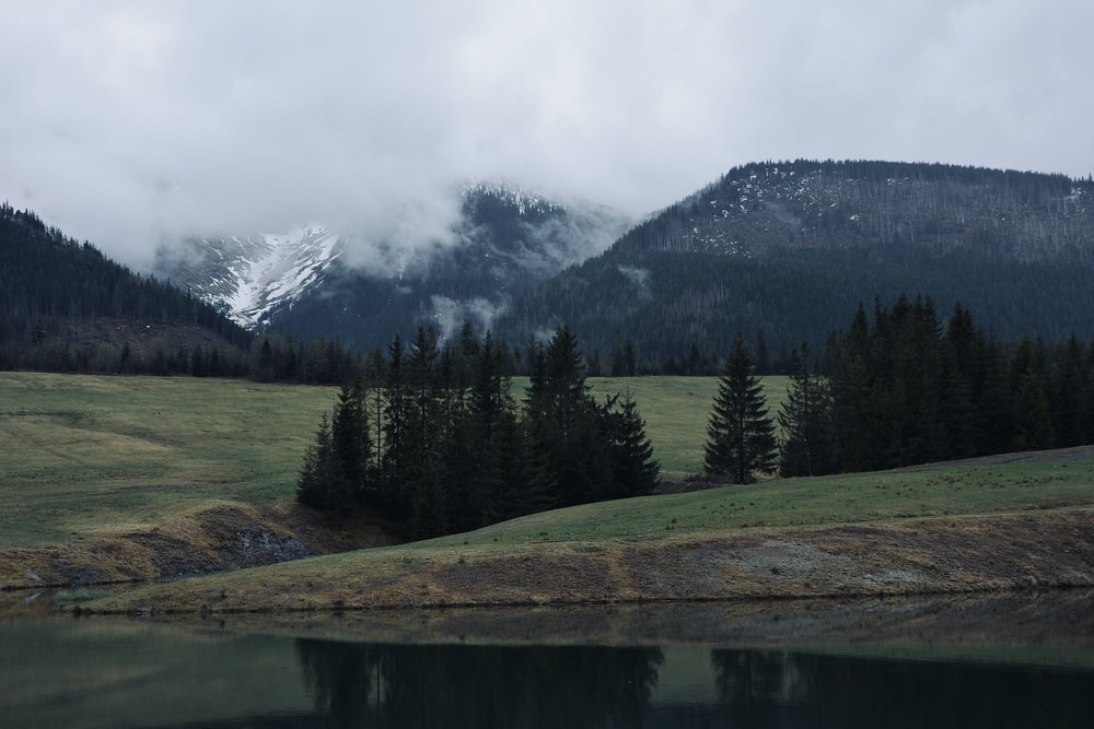 green trees near lake and mountain under white clouds