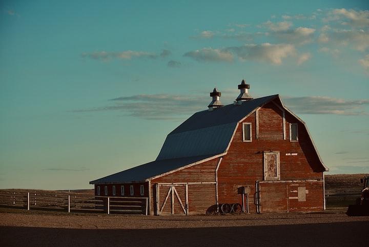 Things in the Barn