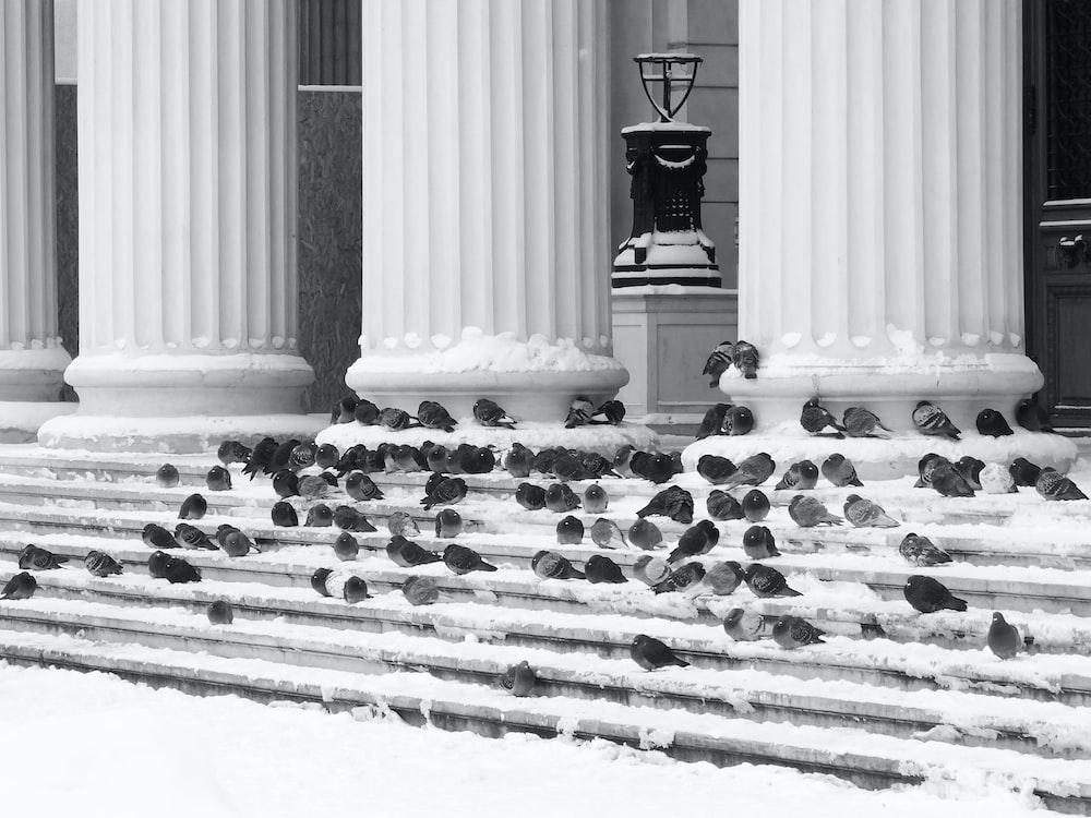 black and white cross on white concrete pillar