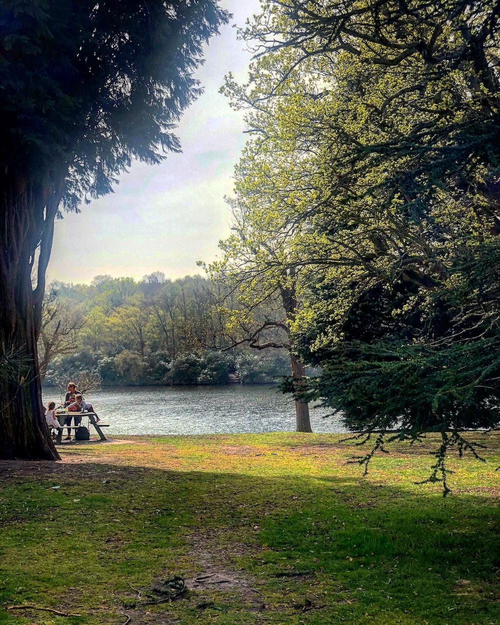 people sitting on bench near lake during daytime