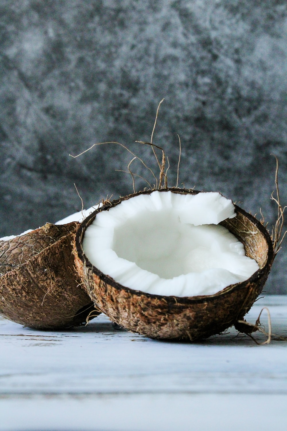brown and white coconut shell on white snow