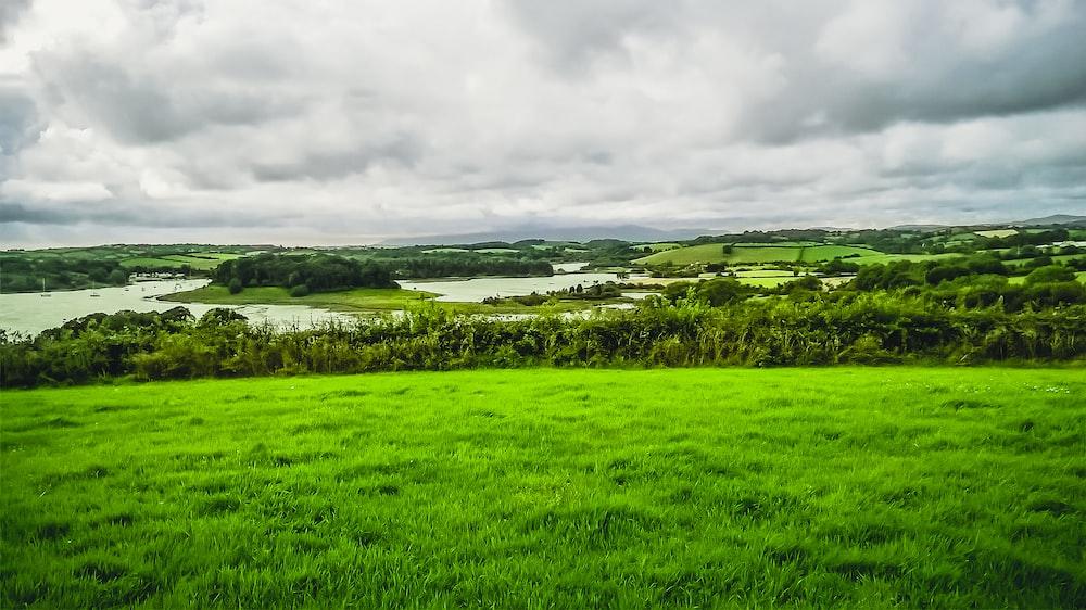 green grass field under cloudy sky during daytime