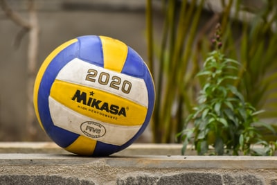yellow and blue volleyball on brown wooden fence volleyball zoom background