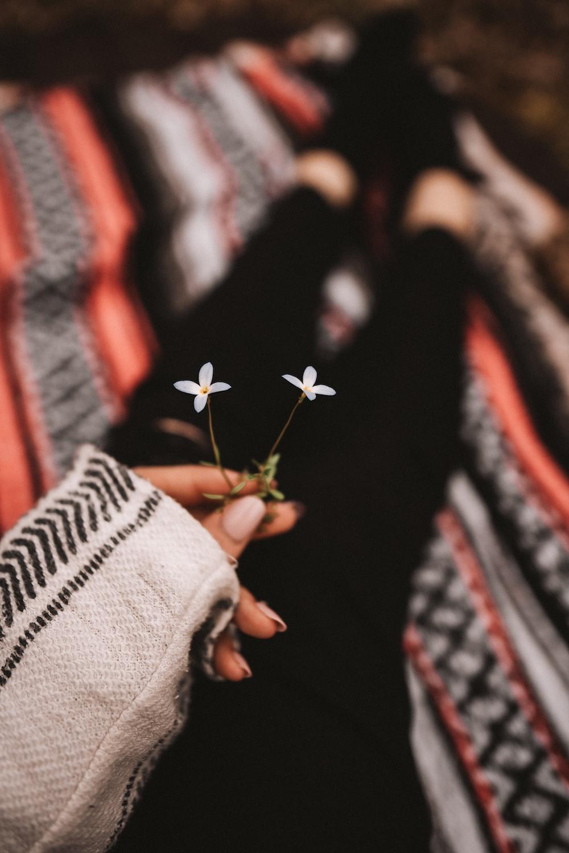 person holding red flower in tilt shift lens