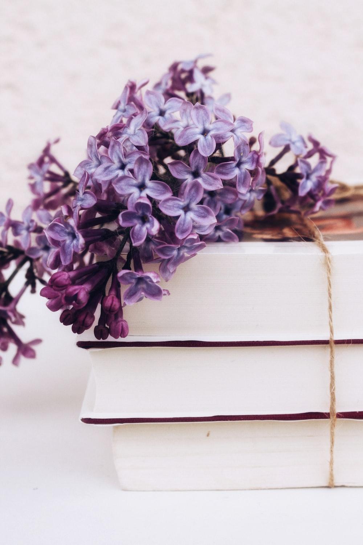 purple flowers on white wooden box