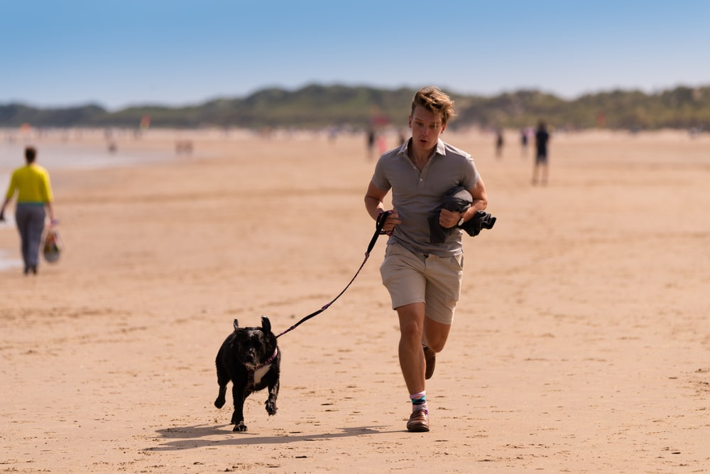 woman in gray long sleeve shirt and white shorts holding black short coated dog during daytime