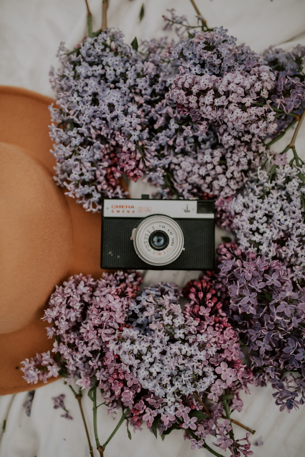 black and silver camera on purple flowers