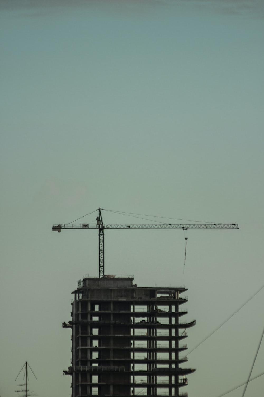 black crane under blue sky during daytime