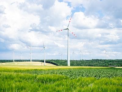 Wind turbines near Mistelbach, Austria.