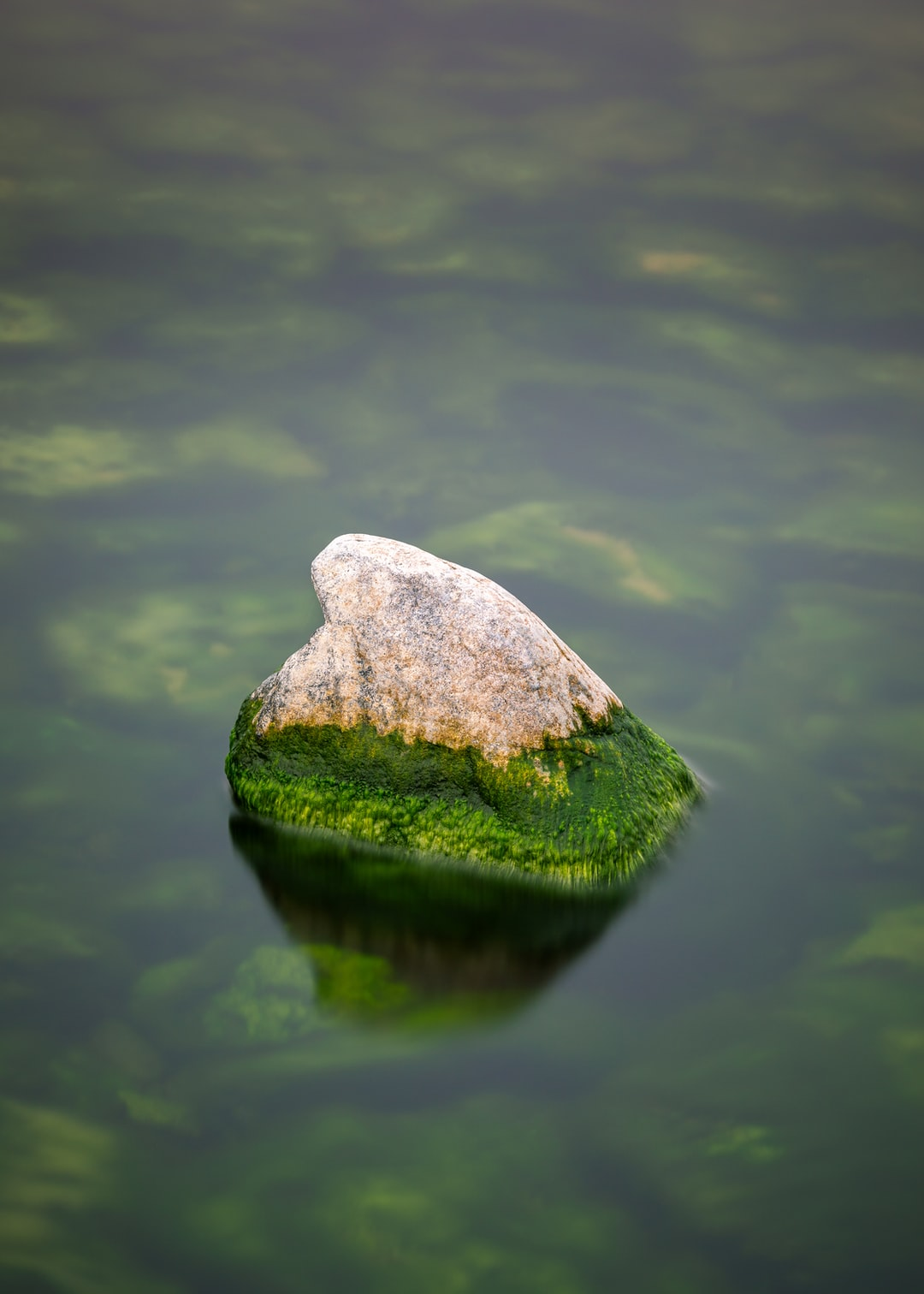 Shark Fin Rock