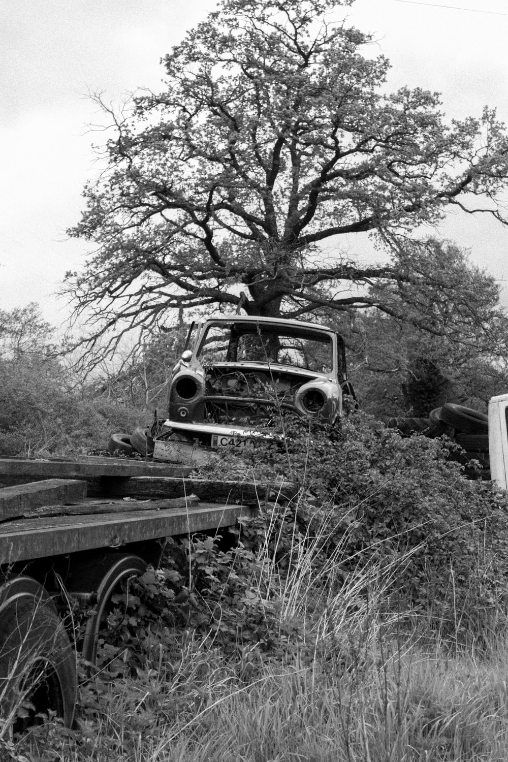 grayscale photo of vintage car in the middle of the forest