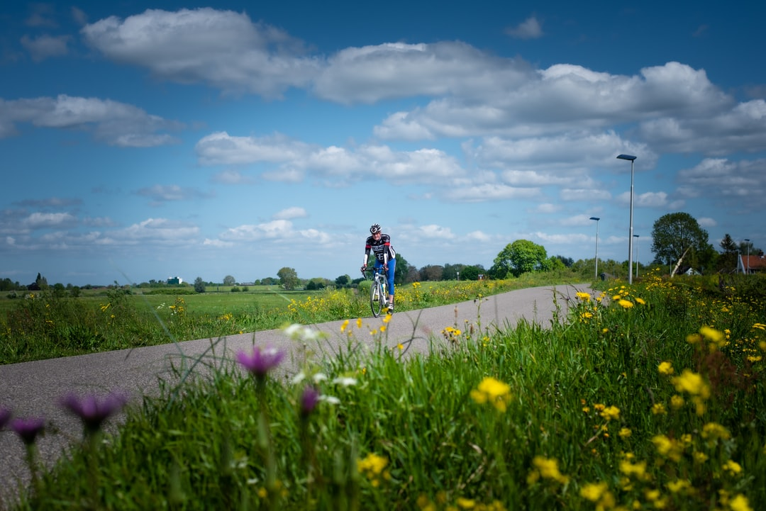 Cyclist on dyke on sunny spring day in Culemborg, The Netherlands