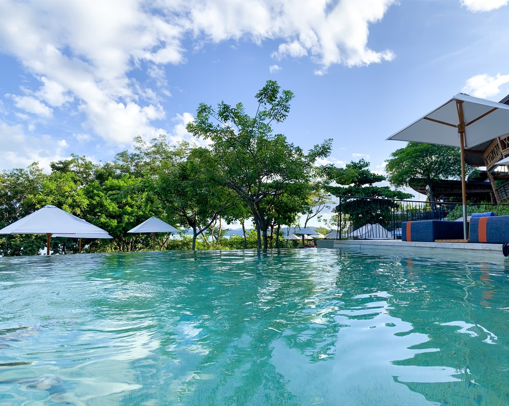 green palm trees near swimming pool under blue sky during daytime