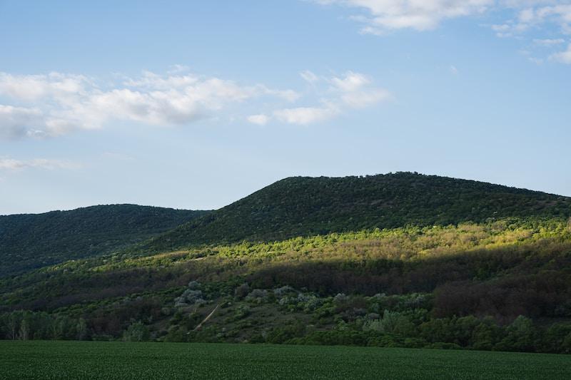 Font Hill