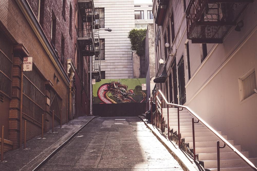 brown brick pathway between houses during daytime