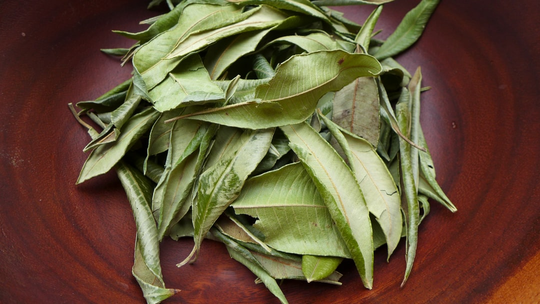 Lemon myrtle is one of my favorite herbs that is full of benefits and citrus lemon scent.