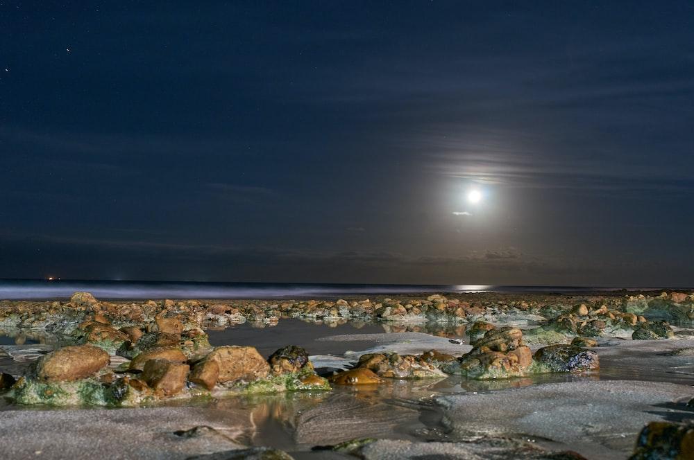 brown rocks on seashore during night time