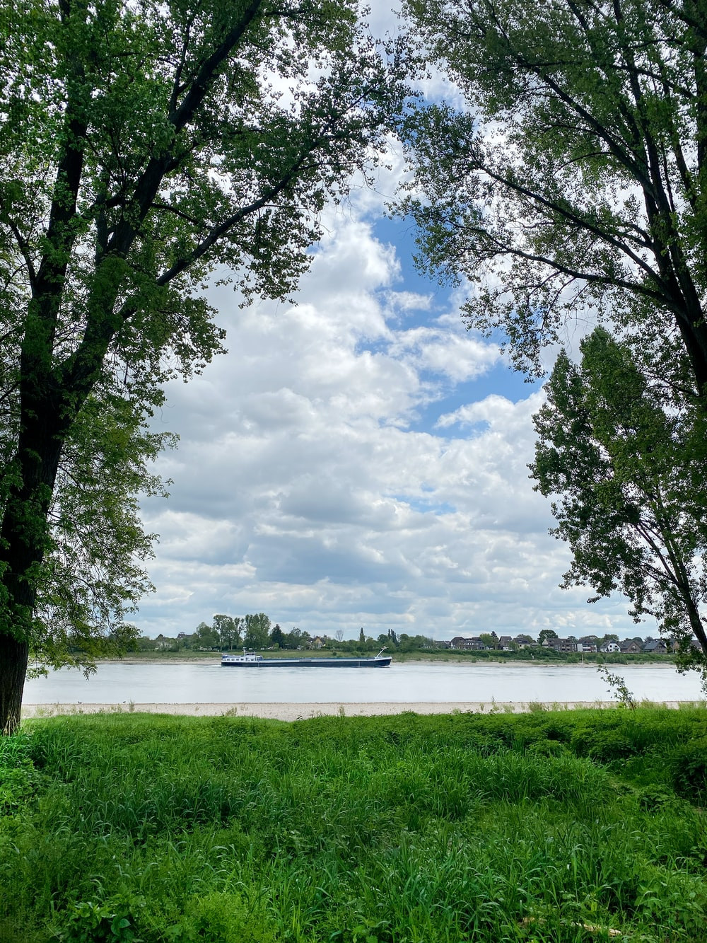 green trees near body of water under white clouds and blue sky during daytime