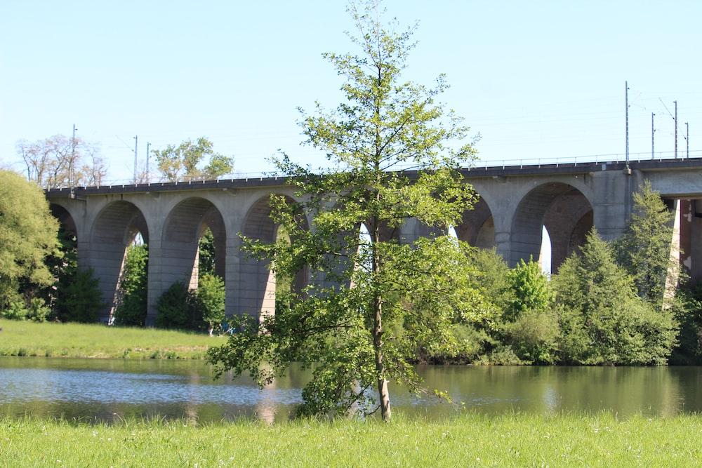 gray concrete bridge over river during daytime