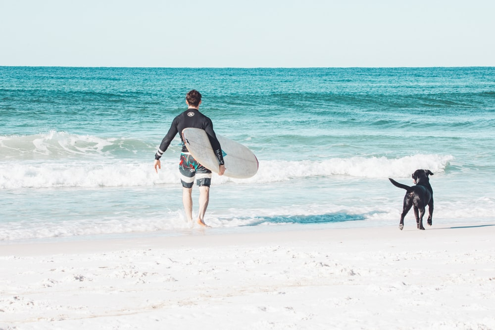 man in black wetsuit carrying white surfboard walking on beach during daytime