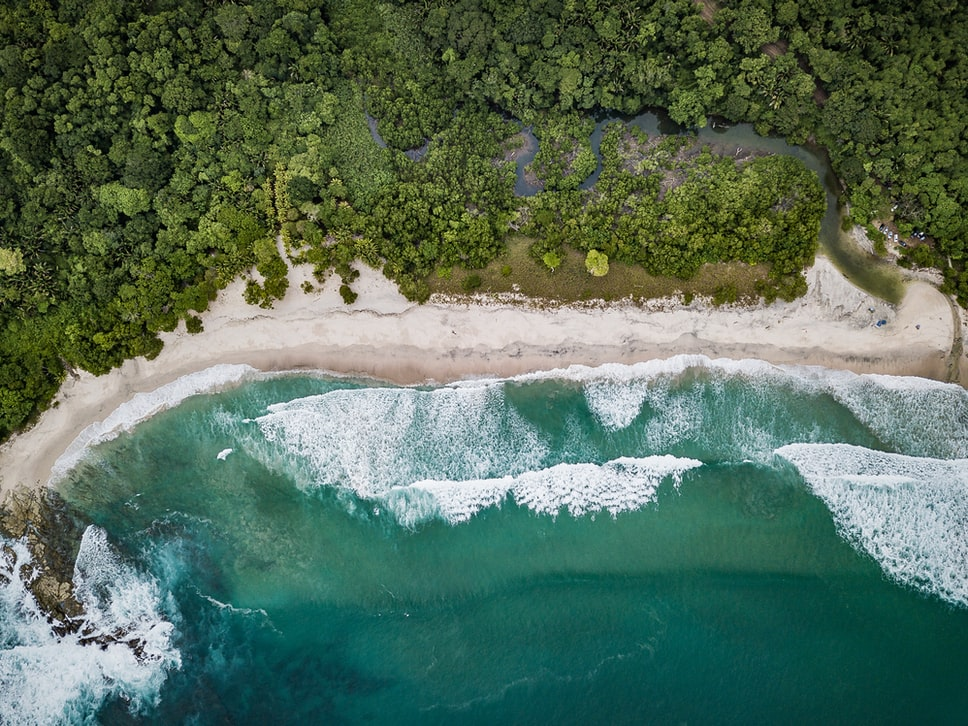 Ariel view of Cano Island beach and forest