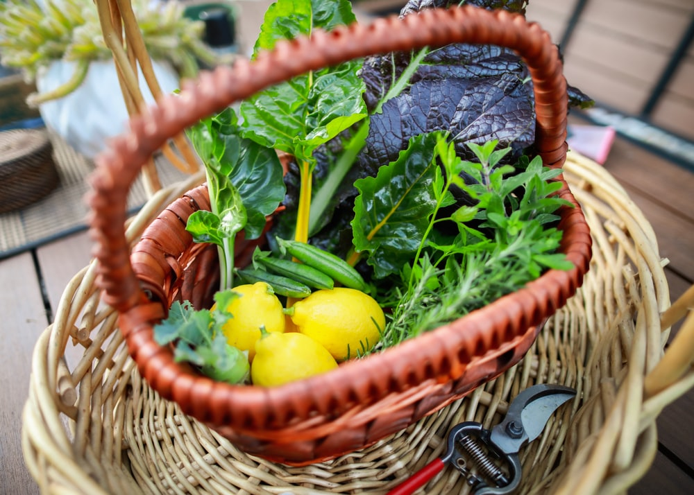 yellow round fruit on brown woven basket