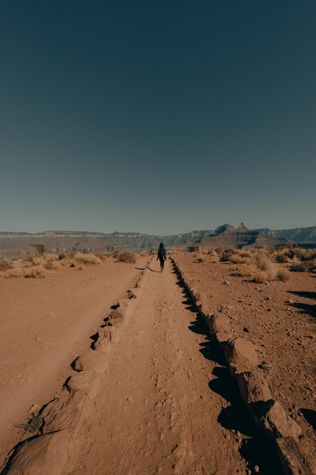 Walking through the canyon [ IG: @clay.banks ]