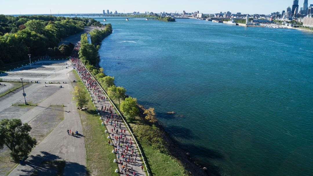Montreal Marathon 2016