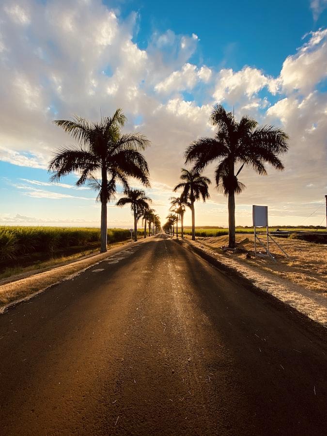 Mauritius roads