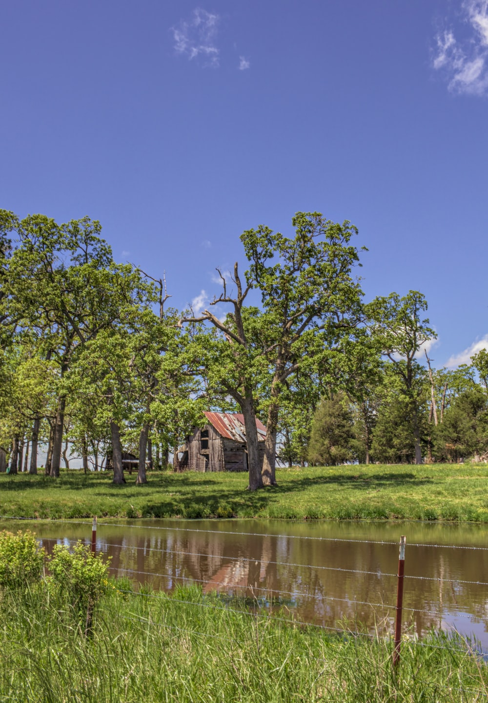 brown wooden house near green trees and river during daytime