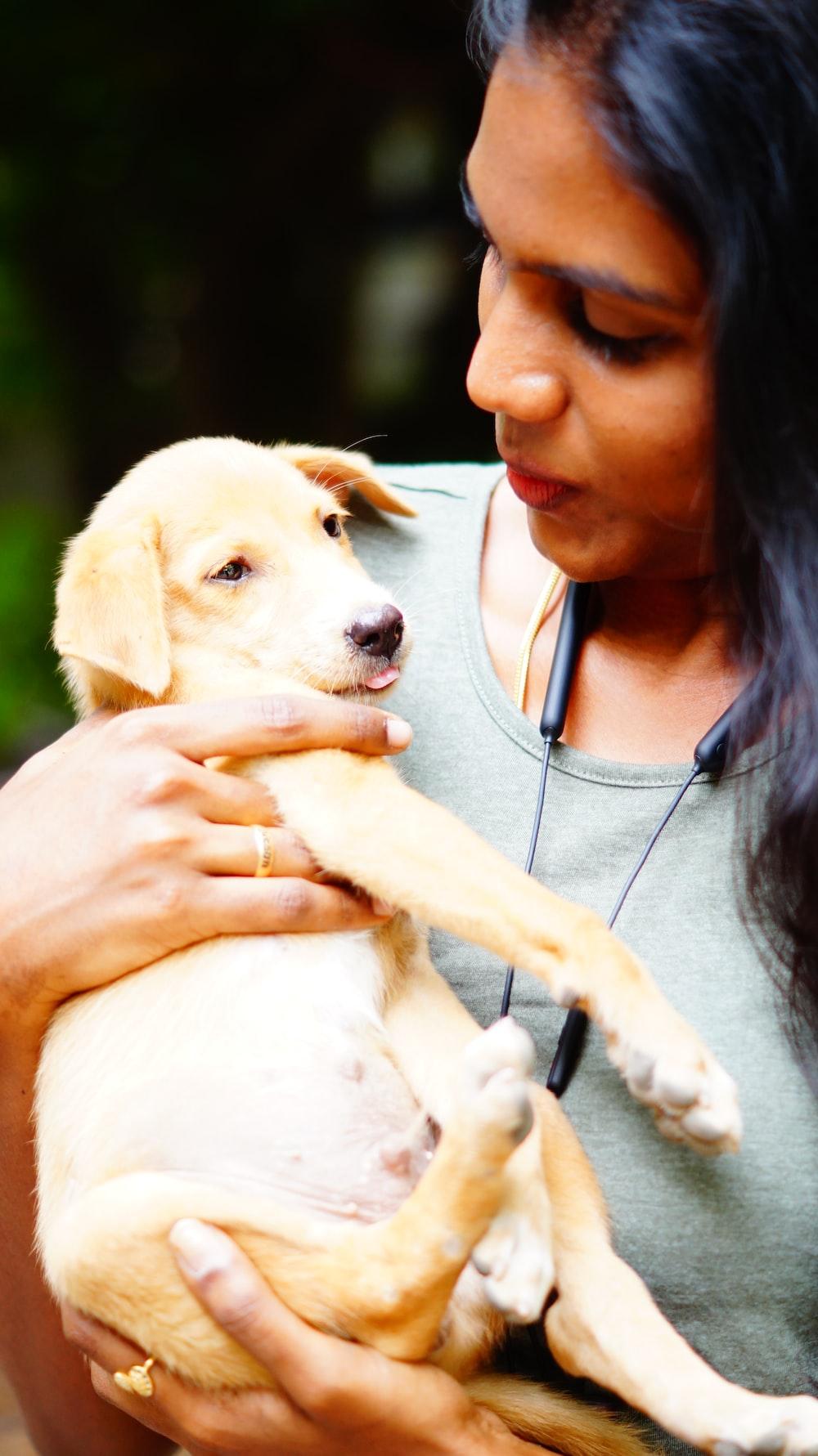girl in gray shirt holding white short coated dog