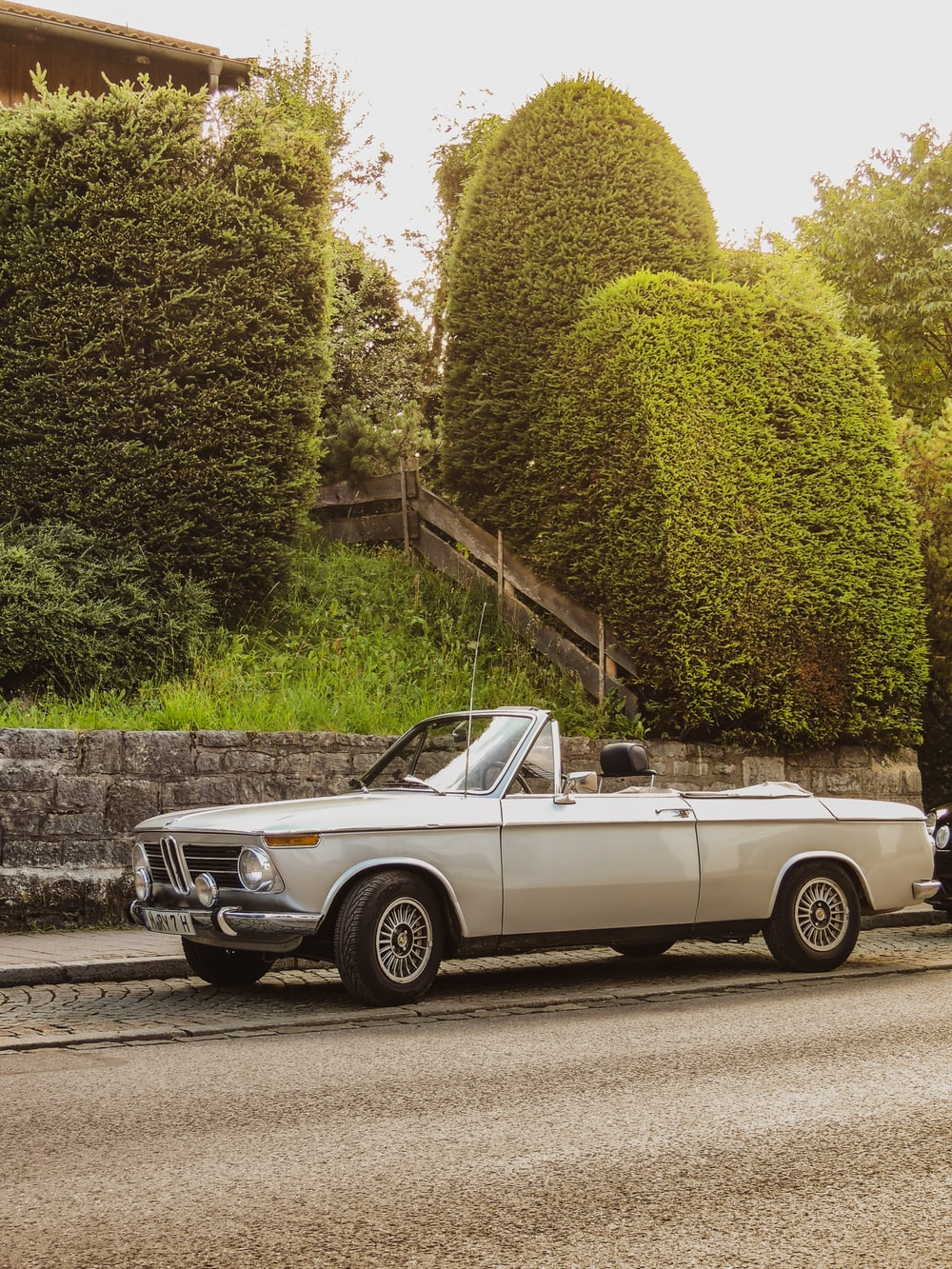 white convertible coupe parked beside green tree during daytime