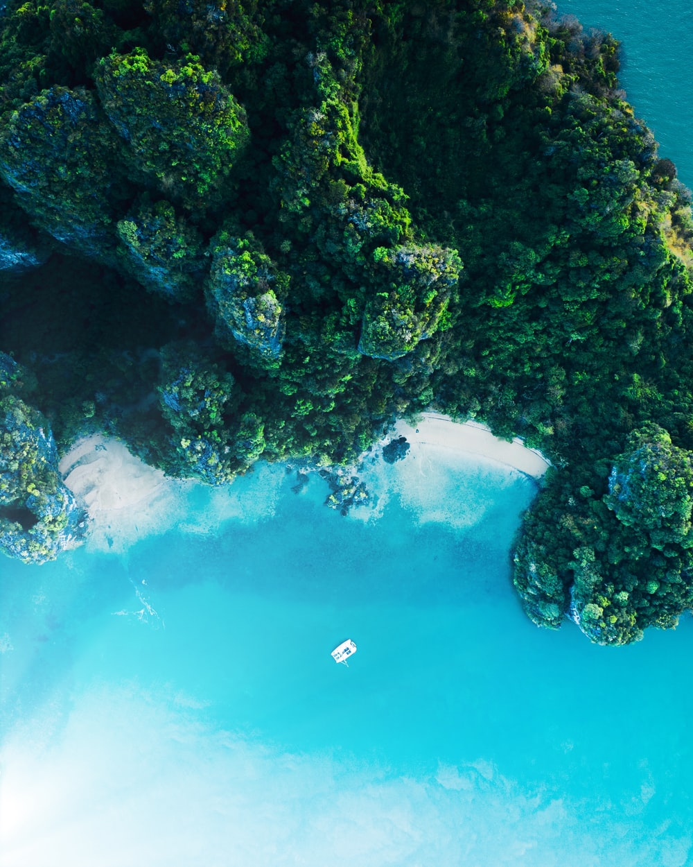 aerial view of green trees beside blue sea during daytime