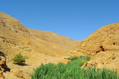 green grass and brown mountain under blue sky during daytime palestine zoom background