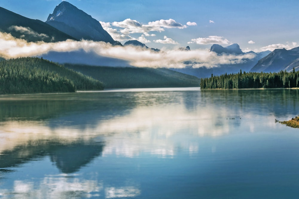 green trees near lake under blue sky during daytime, setting in Alberta, Canada