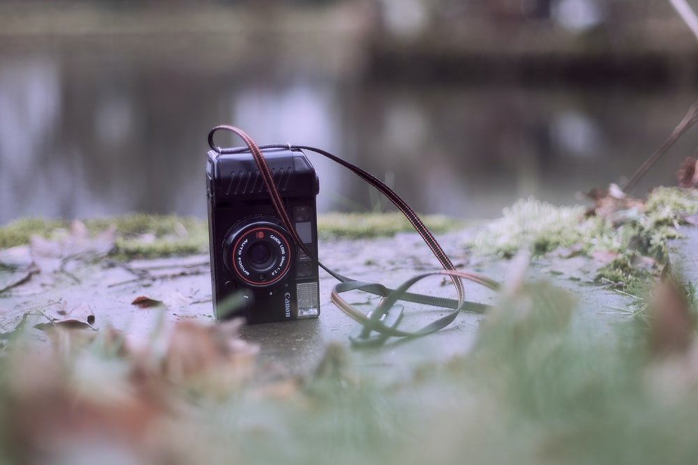 black and red camera on green grass