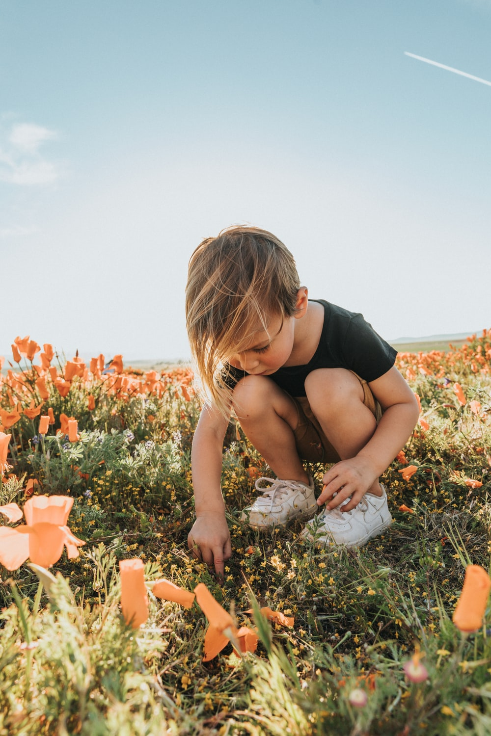 woman in black tank top sitting on ground surrounded by orange flowers during daytime