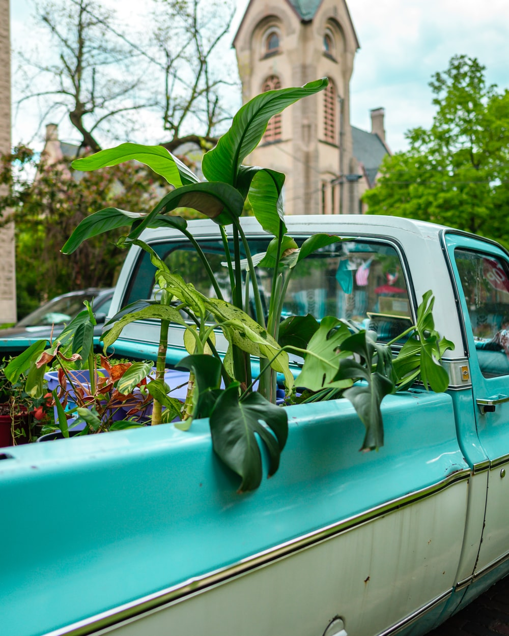 green car with flowers on top