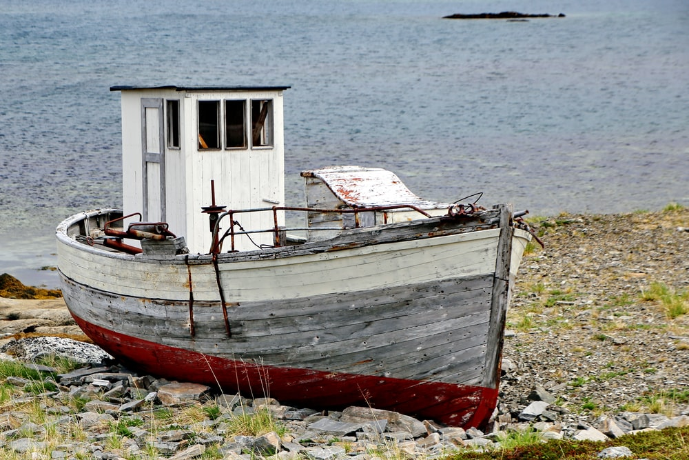 red and white boat on shore during daytime