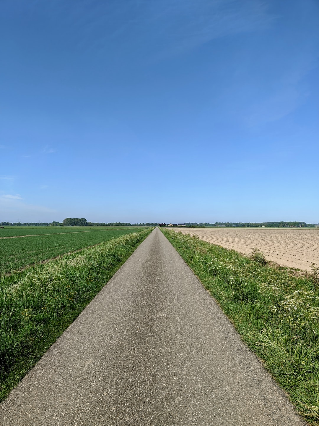 Empty road during corona times in the Netherlands. Biking on a beautiful spring day.