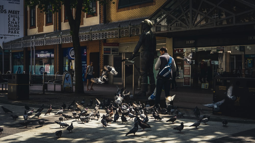 man in black leather jacket standing on sidewalk with pigeons on the ground